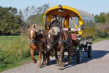 Schaproder & Hiddensee