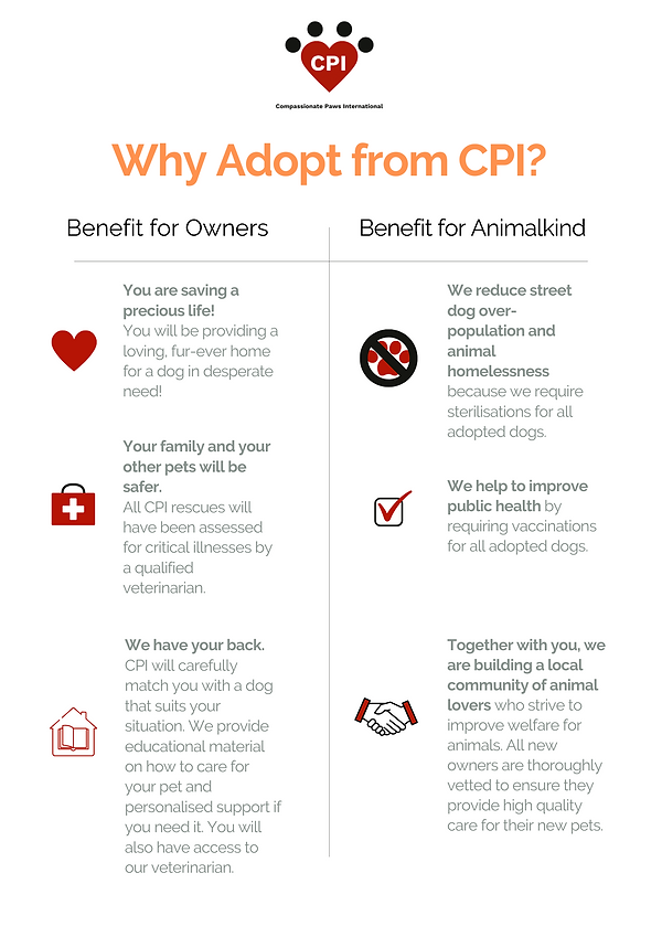 Why Adopt From CPI.png