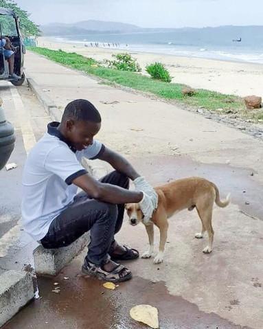 Lumley Dog with Volunteer