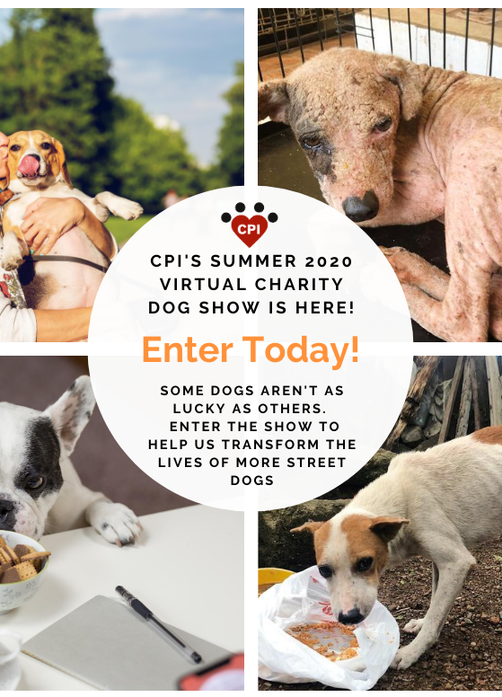_No text CPI Summer 2020 Virtual Dog Sho