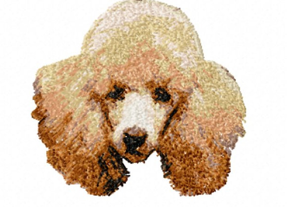 Apricot Poodle (Photostitch)