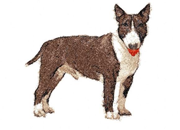 Bull Terrier Photostitch