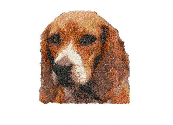Beagle Photostitch