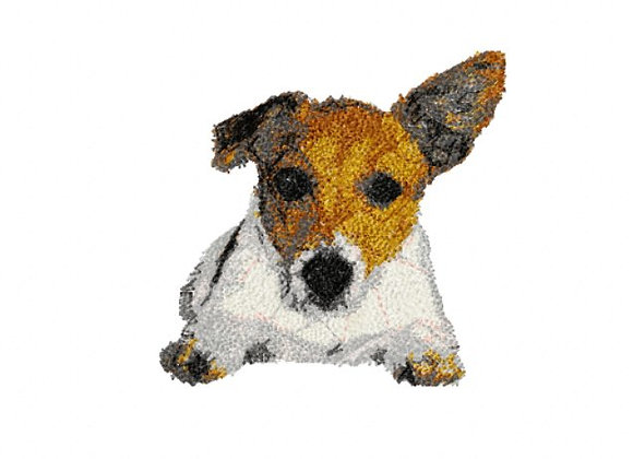 Jessie (The Jack Russell)