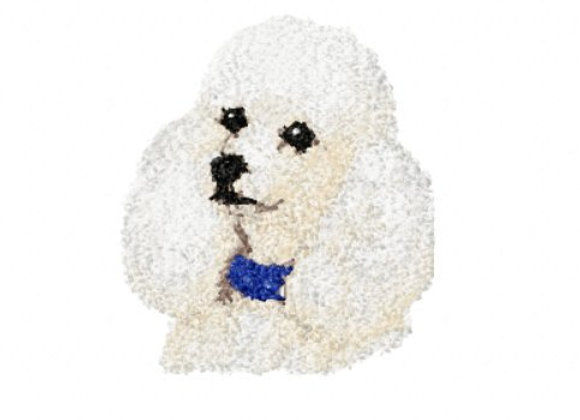 WHITE POODLE PHOTOSTITCH