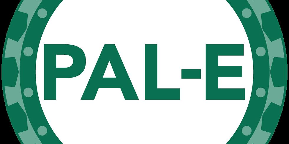 Dallas - Professional Agile Leadership-Essentials