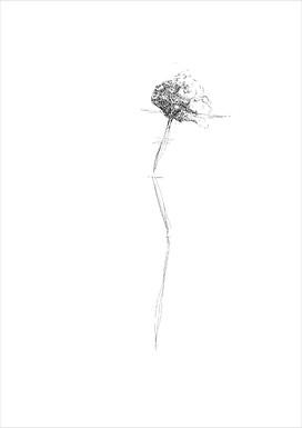 Flower 2, 2012