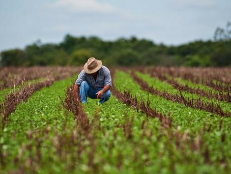 """Mais um """"imposto"""" para o produtor de soja em Goiás"""