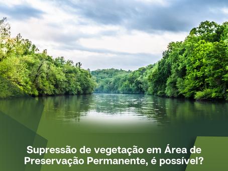 Supressão de vegetação em Área de Preservação Permanente, é possível?