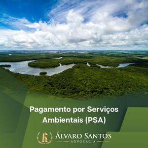 Entenda o que é Pagamento por Serviços Ambientais (PSA)