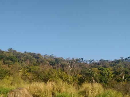 """A sedução da terra """"nua"""" e o ITR em Serranópolis – Goiás"""