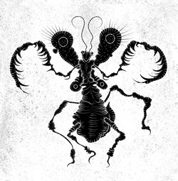 Mantis, 2018