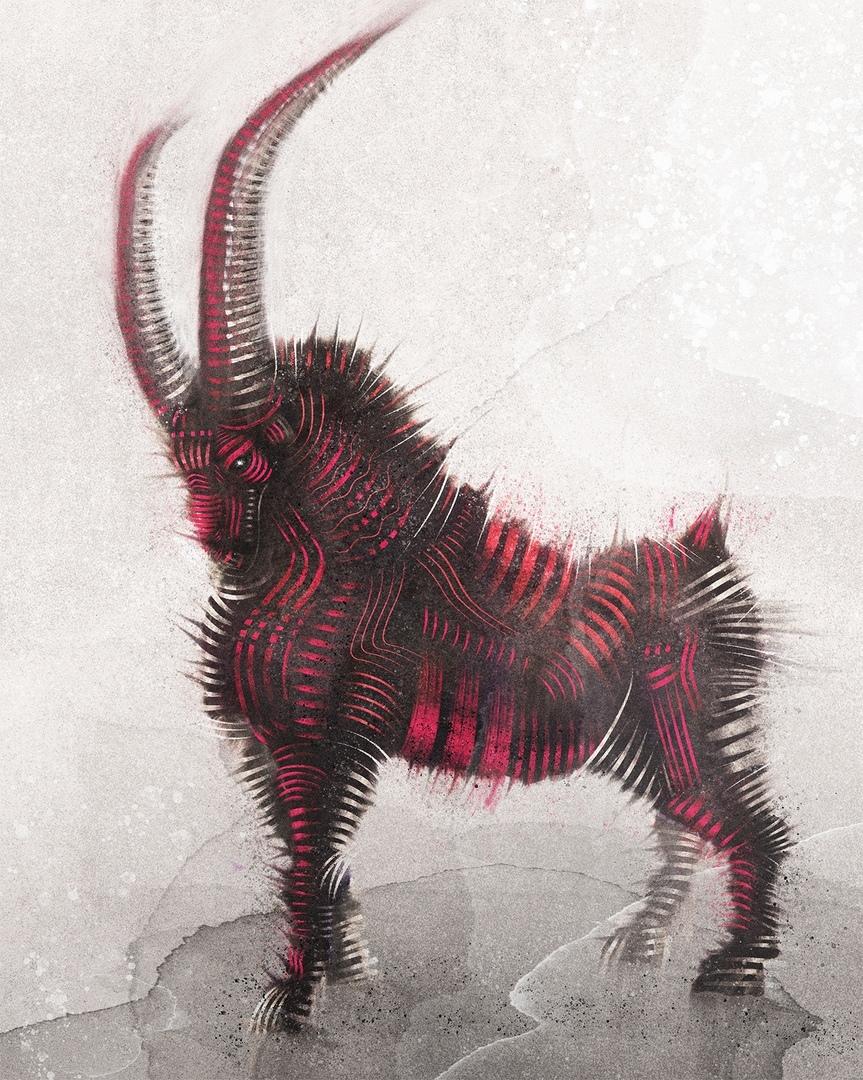 Mountain goat, 2019