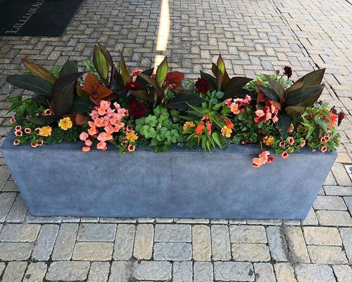 #containergardens _florallandscapedesign