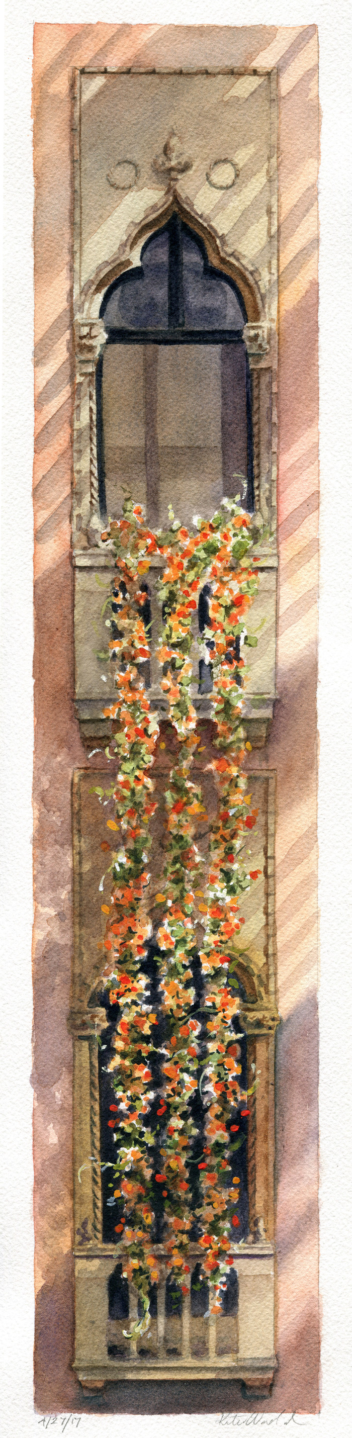 Hanging Nasturtiums