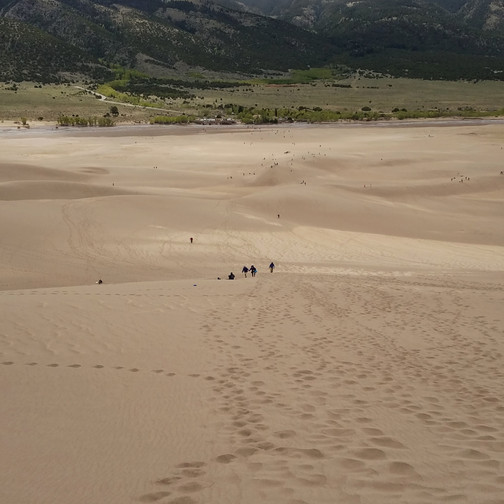 From my climb of the dunes