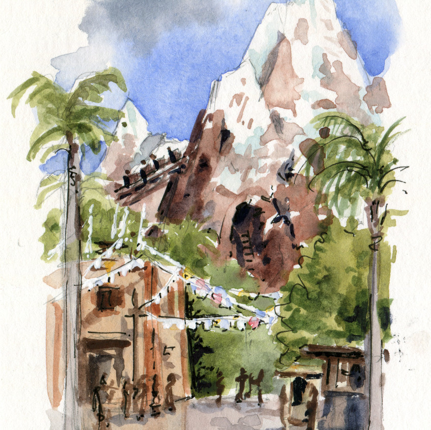 Also in Animal Kingdom: Mount Everest! This roller coaster is SO much fun!