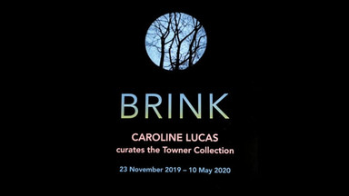 Caroline Lucas curates the Towner Gallery