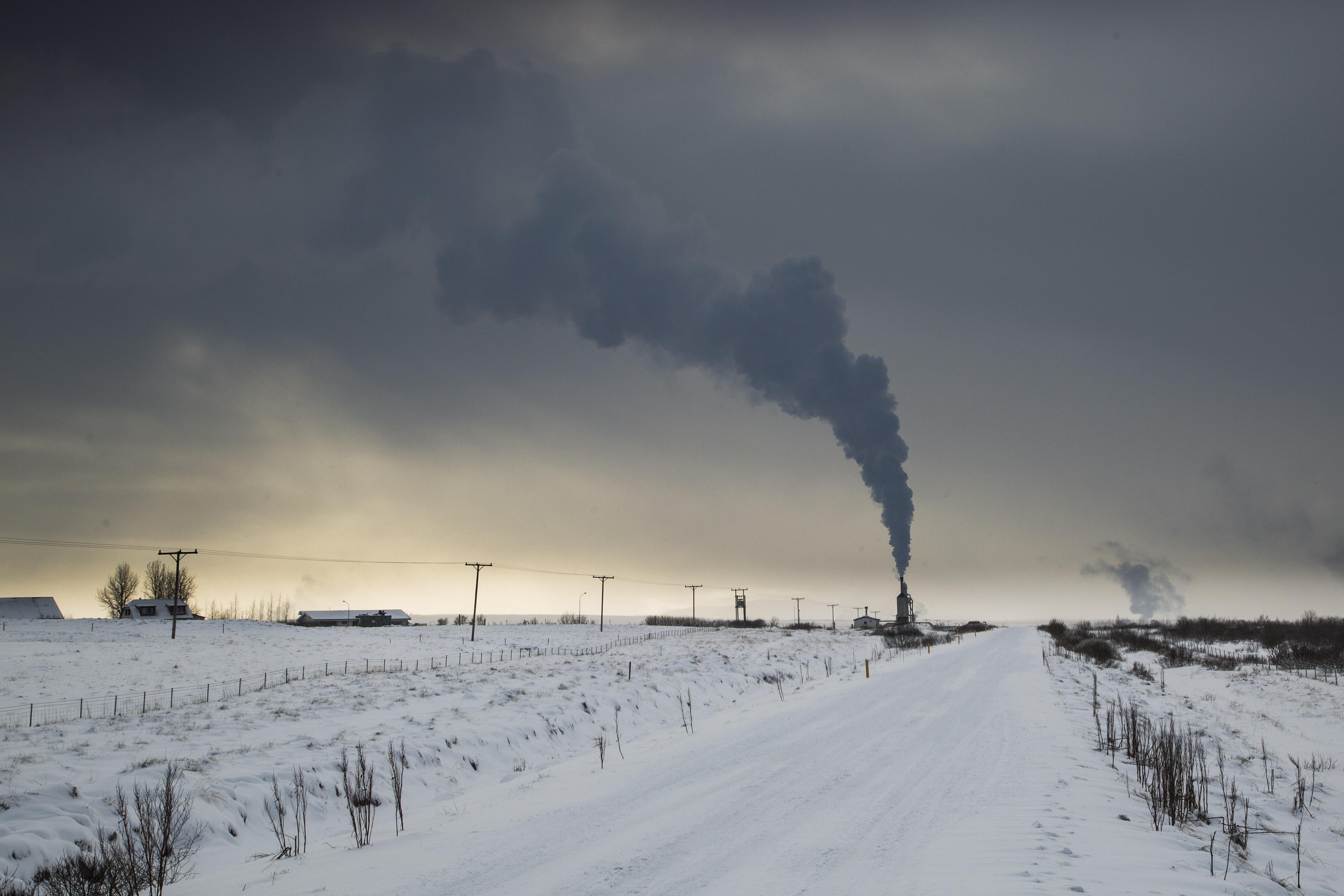 Icelandic industry