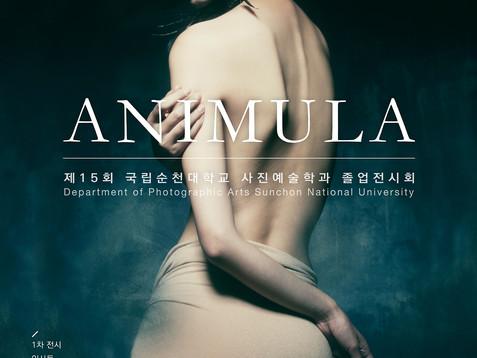 ANIMULA