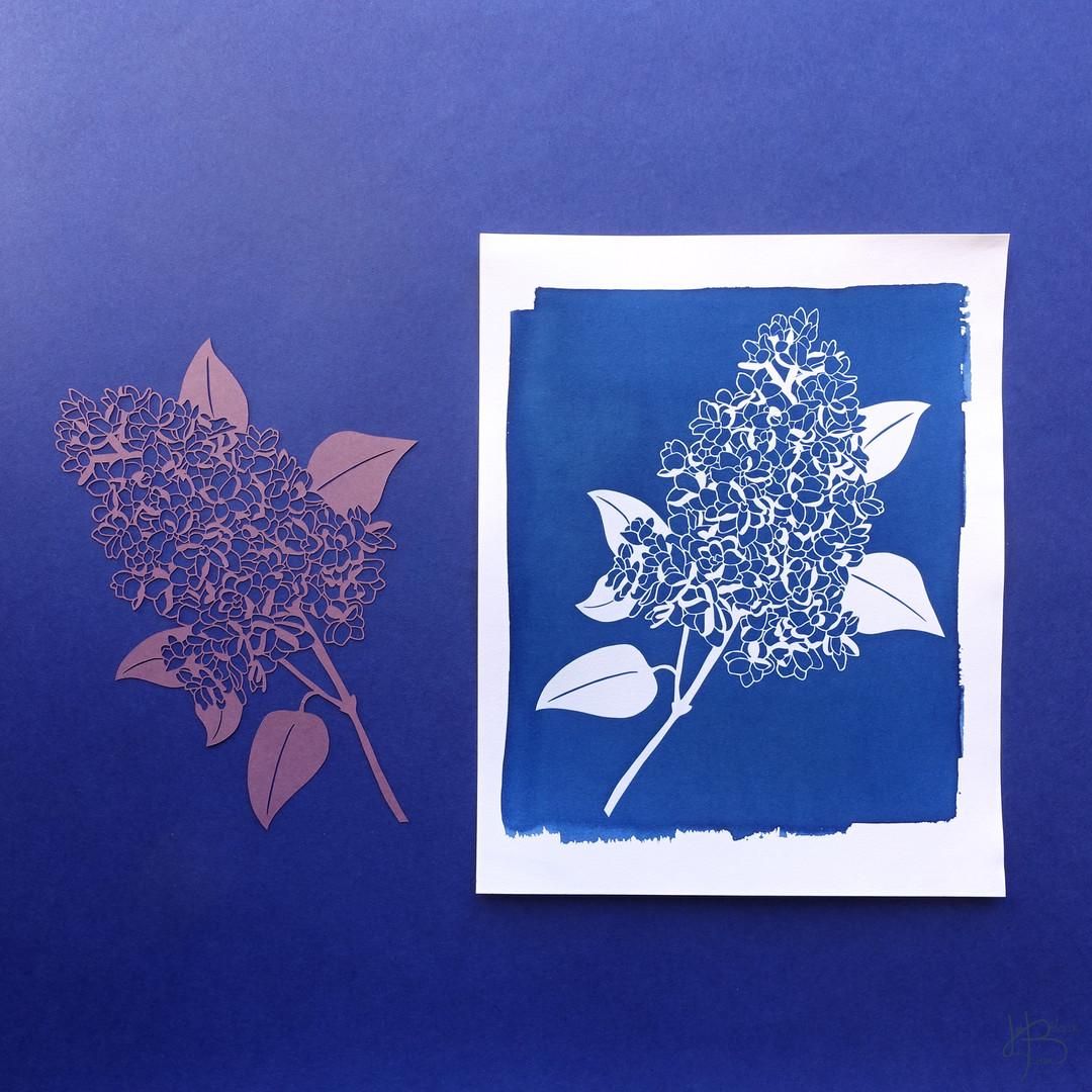 Branche de lilas