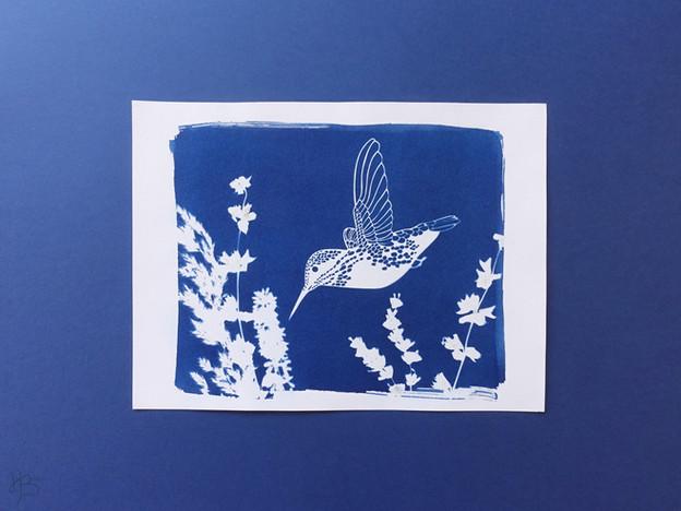 Héloïse Bossard Au Détour du papier Cyanotype procédé alternatif photographie