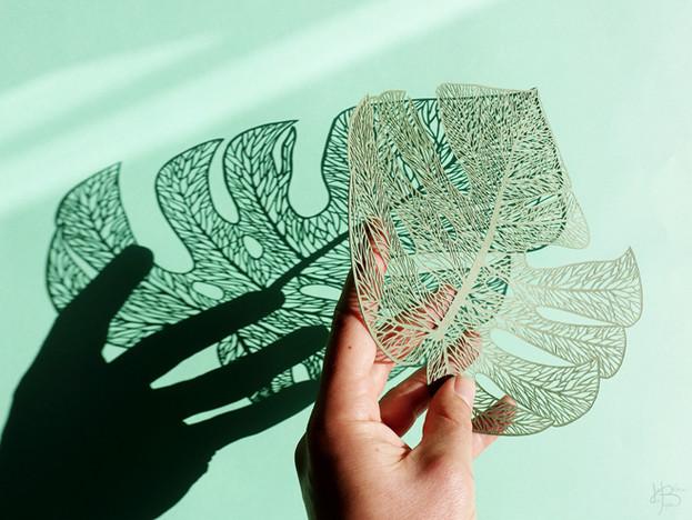 Héloïse Bossard Au Detour du Papier Papercut Monstera Leaf