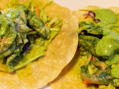 Lime Cilantro Trout Tacos