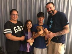 clr adoption dixie 2018