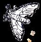 Olimpia Benini