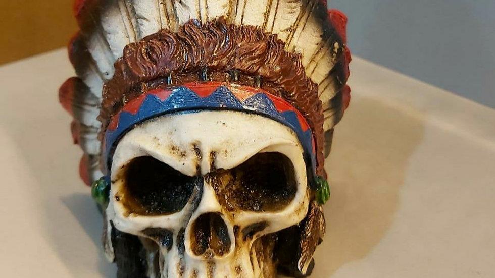 Crânio indígena 10cm
