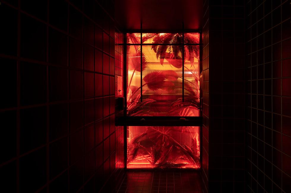 DSC02446-rouge.jpg