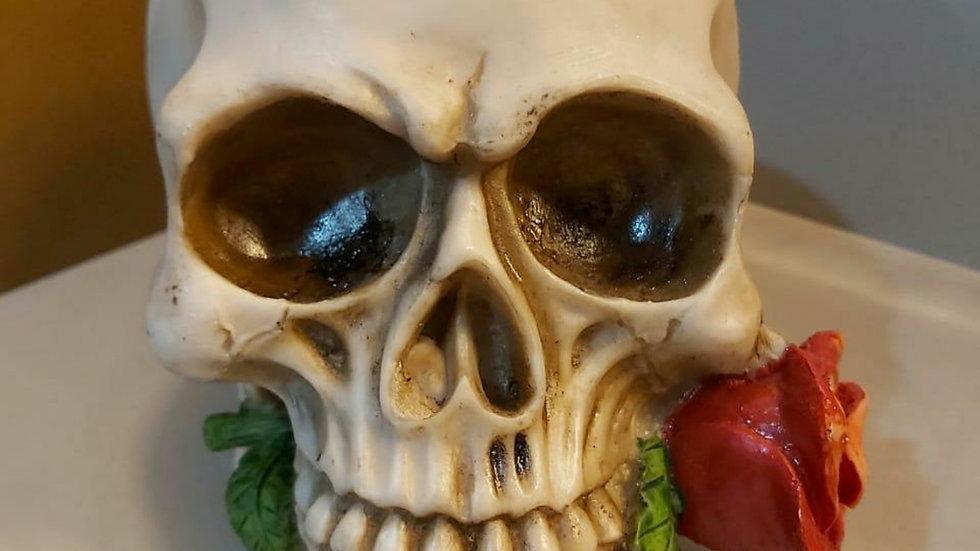 Crânio rosa na boca 15cm