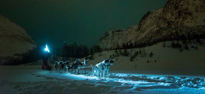 Husky Sledging in Tromso Norway