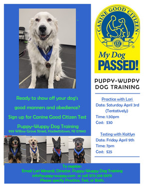 CGC Canine Good Citizen Testing April 2021