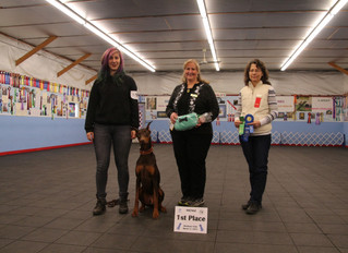 Puppy-Wuppy Students Take First