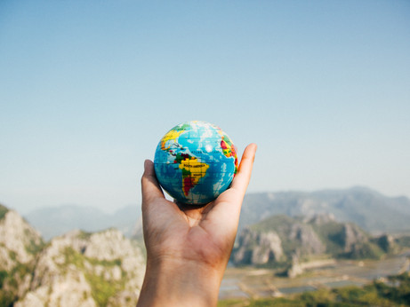 Allegiance to the Earth: Practical Ways to Reduce Waste