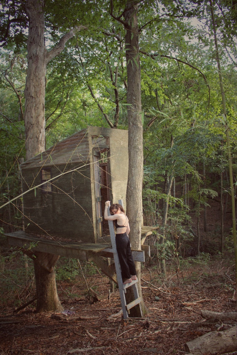 My childhood treehouse in the woods