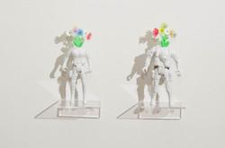 Flores ser, 2016