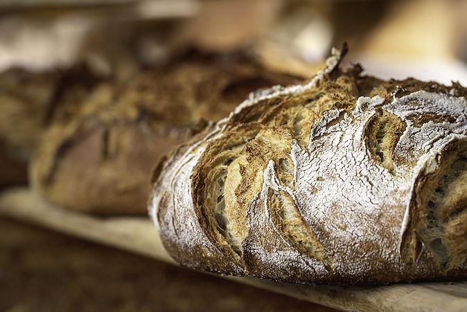 Copy of Breads.jpeg