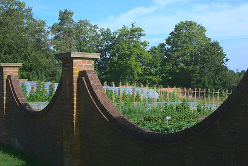 Walled Garden Our Story .jpg