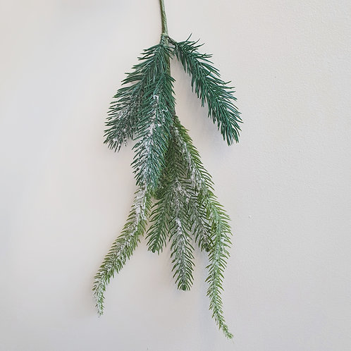 Frosted Fir Sprig