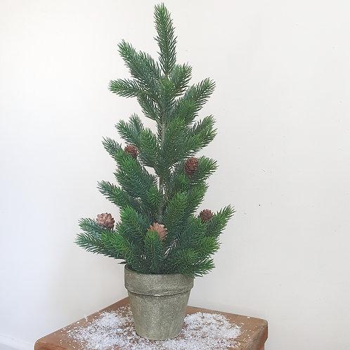 Potted Fir Christmas Tree