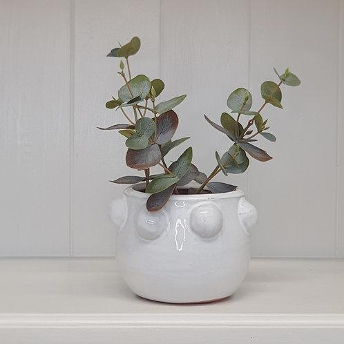 Amara Planter