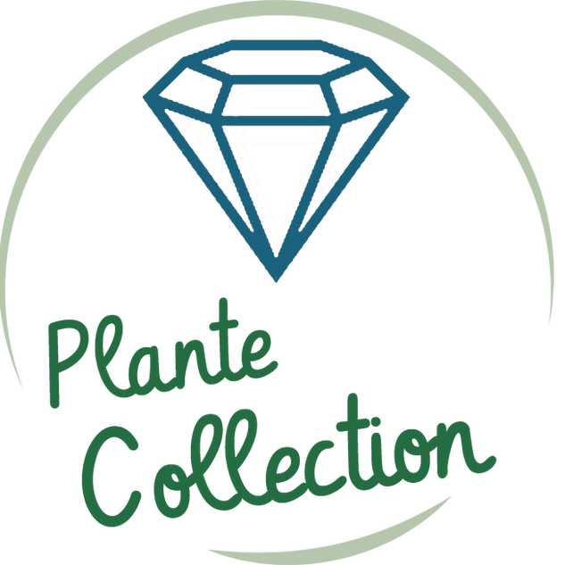 plante collection.png