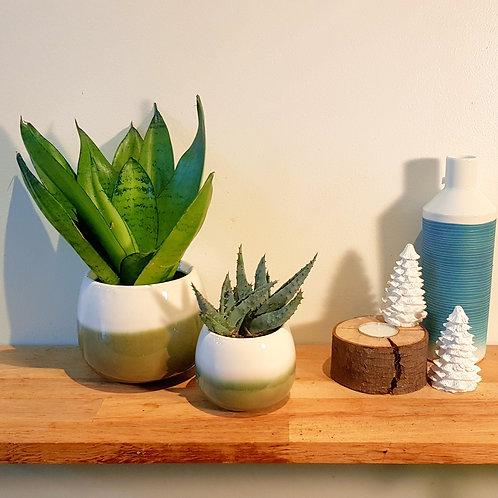 Cache pot Céramique - Graphique vert et blanc -  2 tailles au choix