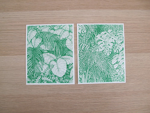2 illustrations JUNGLE 11,5 x 14,5 cm - Holdzeline