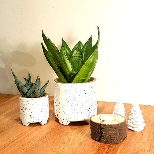 Cache pot Céramique - Blanc poids et liseret doré petit pieds 2 tailles au choix