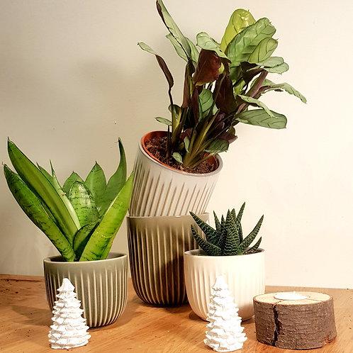 Cache pot Céramique - Blanc ou gris arrondi, lignes relief - 2 tailles au choix