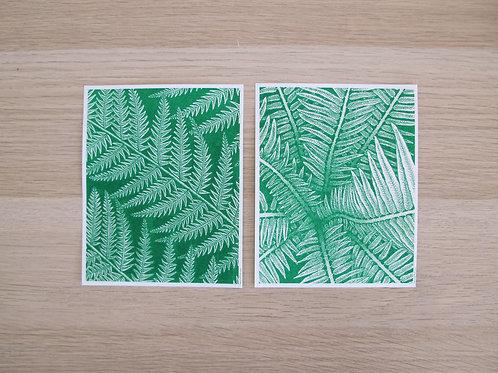 2 illustrations FOUGERES 11,5 x 14,5 cm - Holdzeline